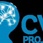 International webinar on CVI featuring Cathy Williams